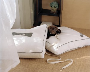 Heavenly Dog Beds®Quelle: Westin Grand Hotel Frankfurt