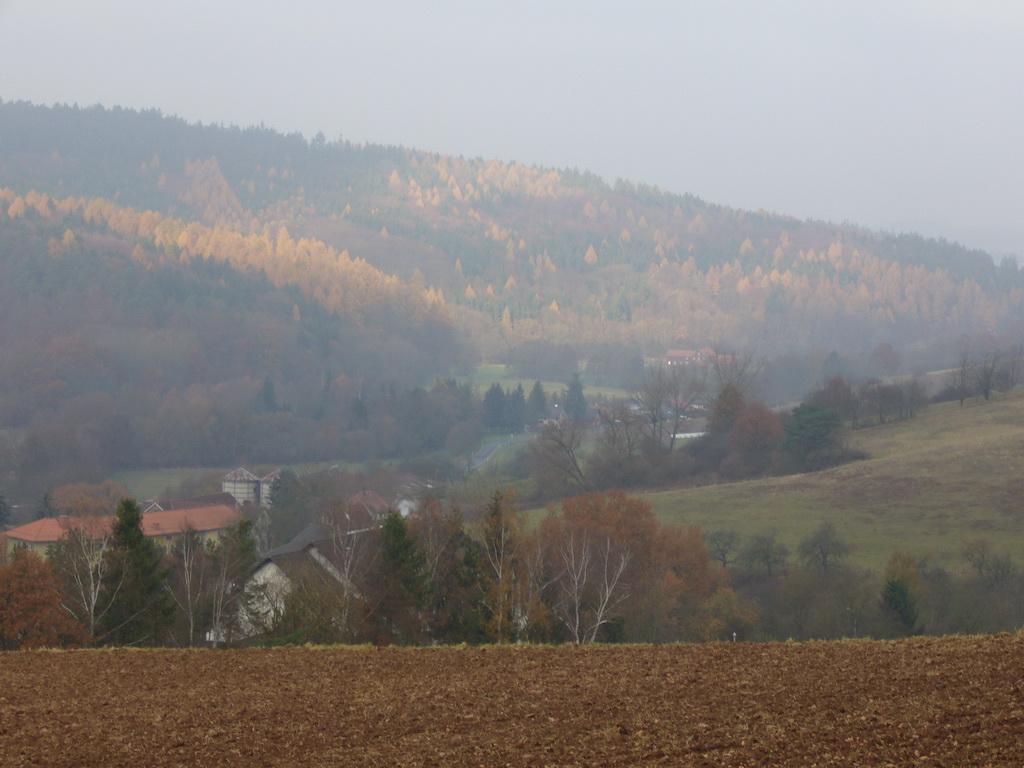 Diesiger Novembermorgen in Rengshausen/Knüllwald
