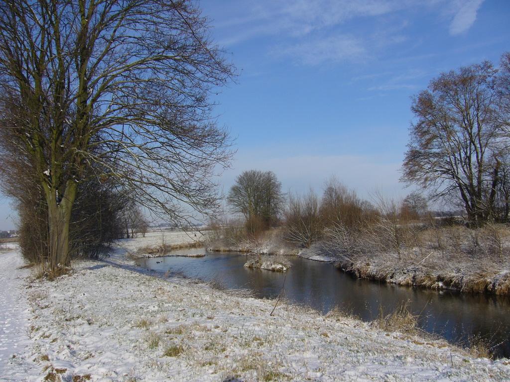 ... winterliches Stilleben ...
