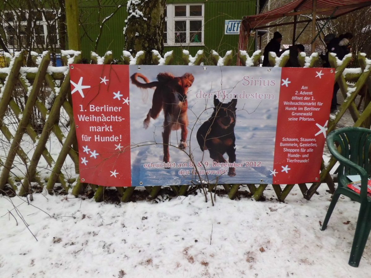 Hundeweihnachten in Berlin