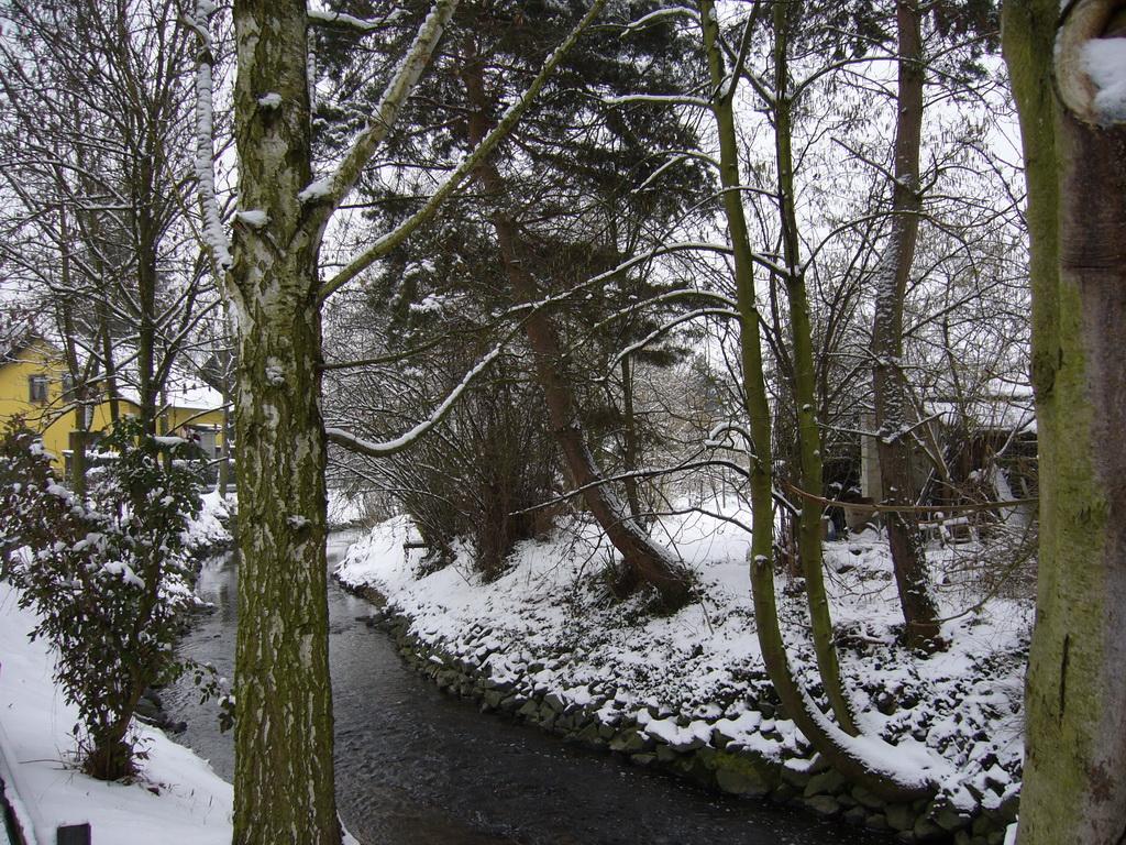 Frankfurter Vorort im Schnee