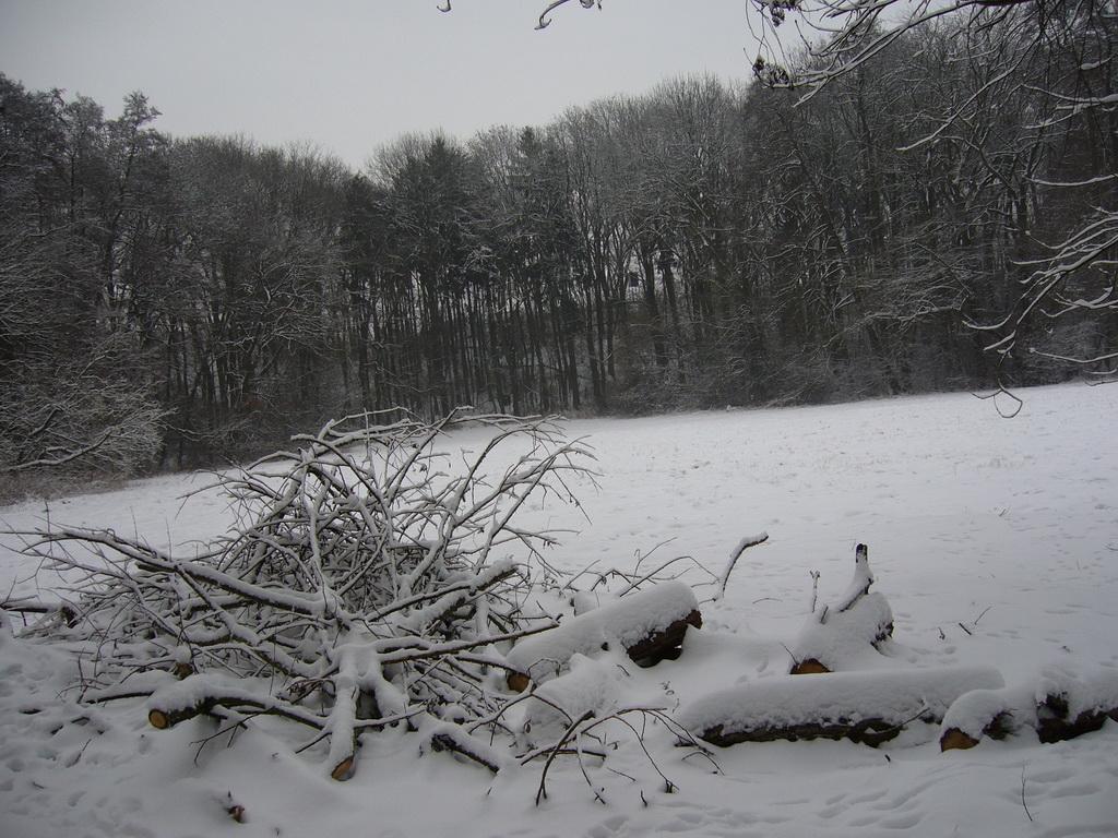 Fast unberührte Winterwelt