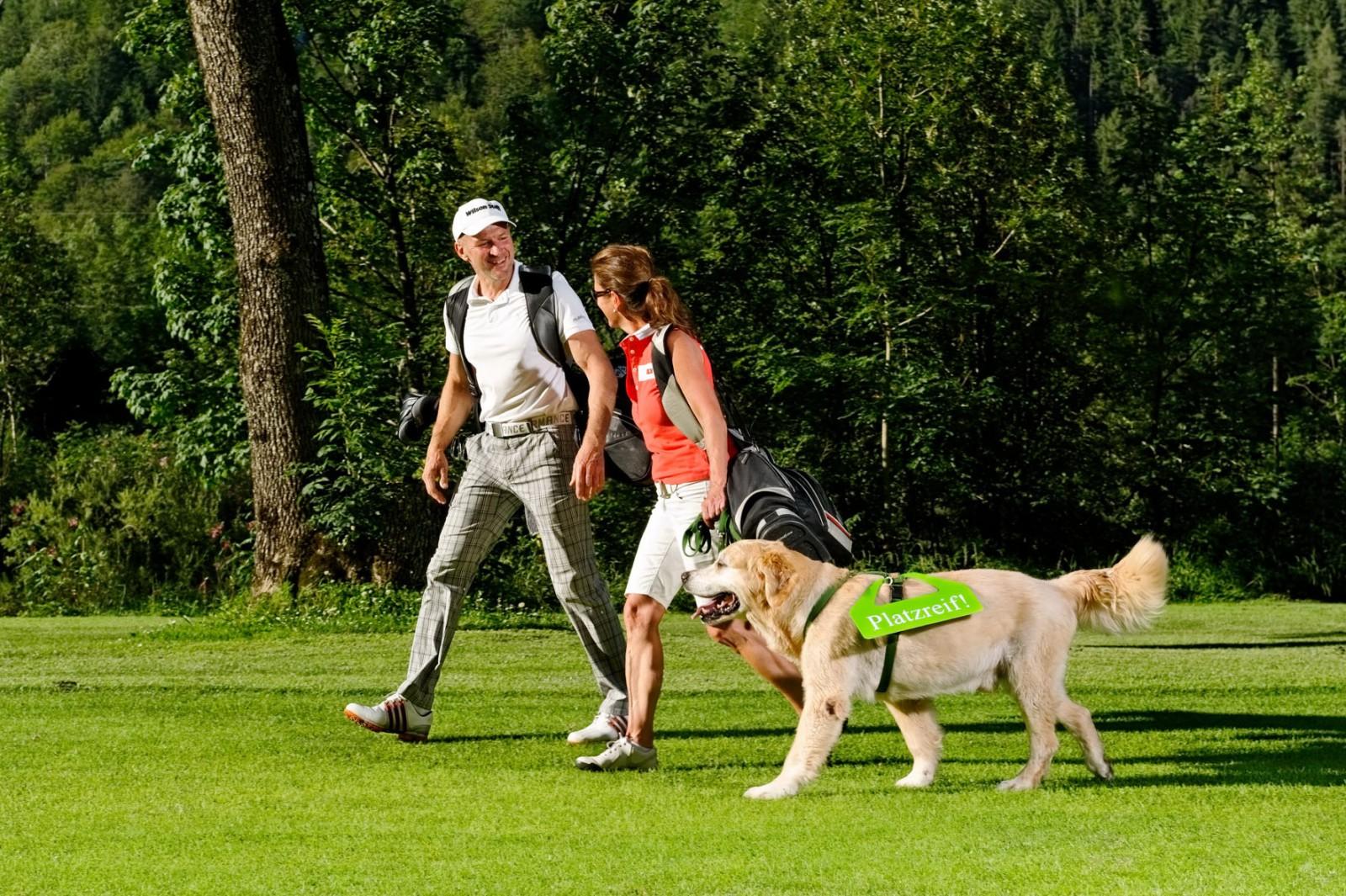 Vier Stunden über den Golfplatz ist nicht für jeden Hund etwasBild: Hotel & Golfclub Brandlhof