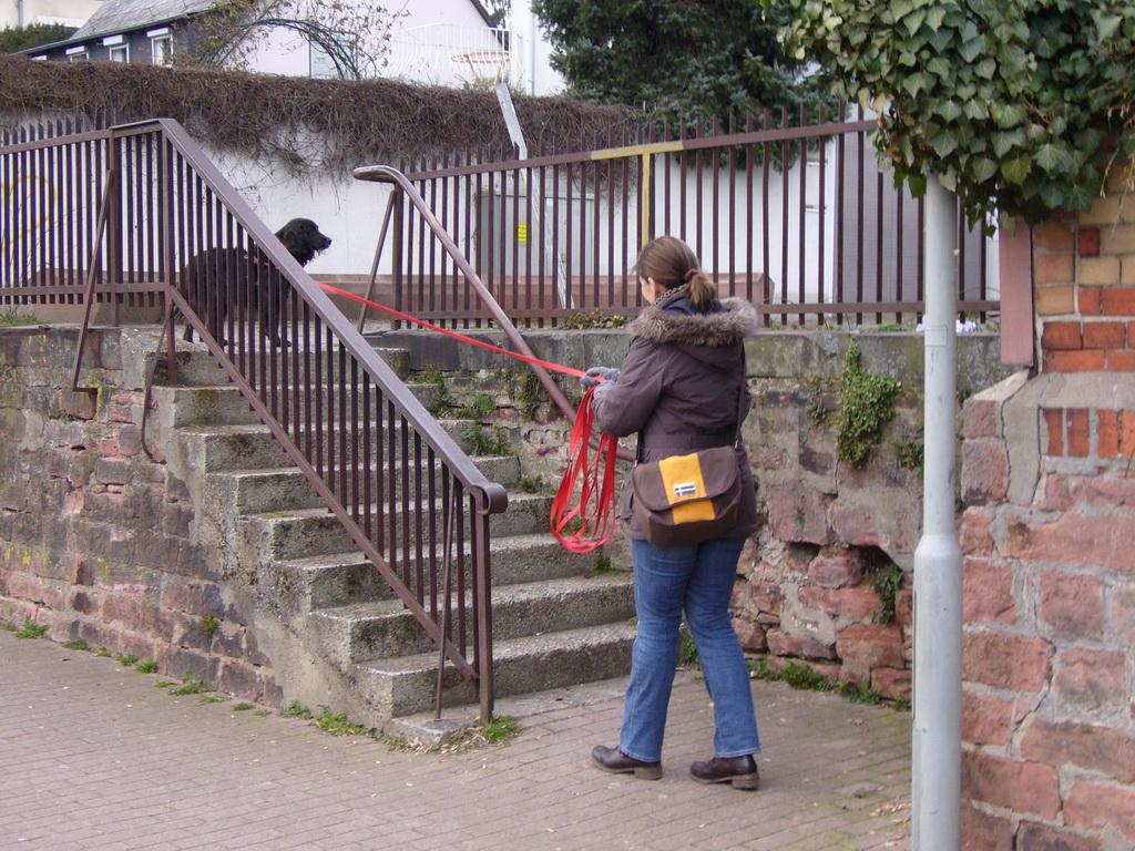 Zur Überprüfung der Spur einmal die Treppe hoch