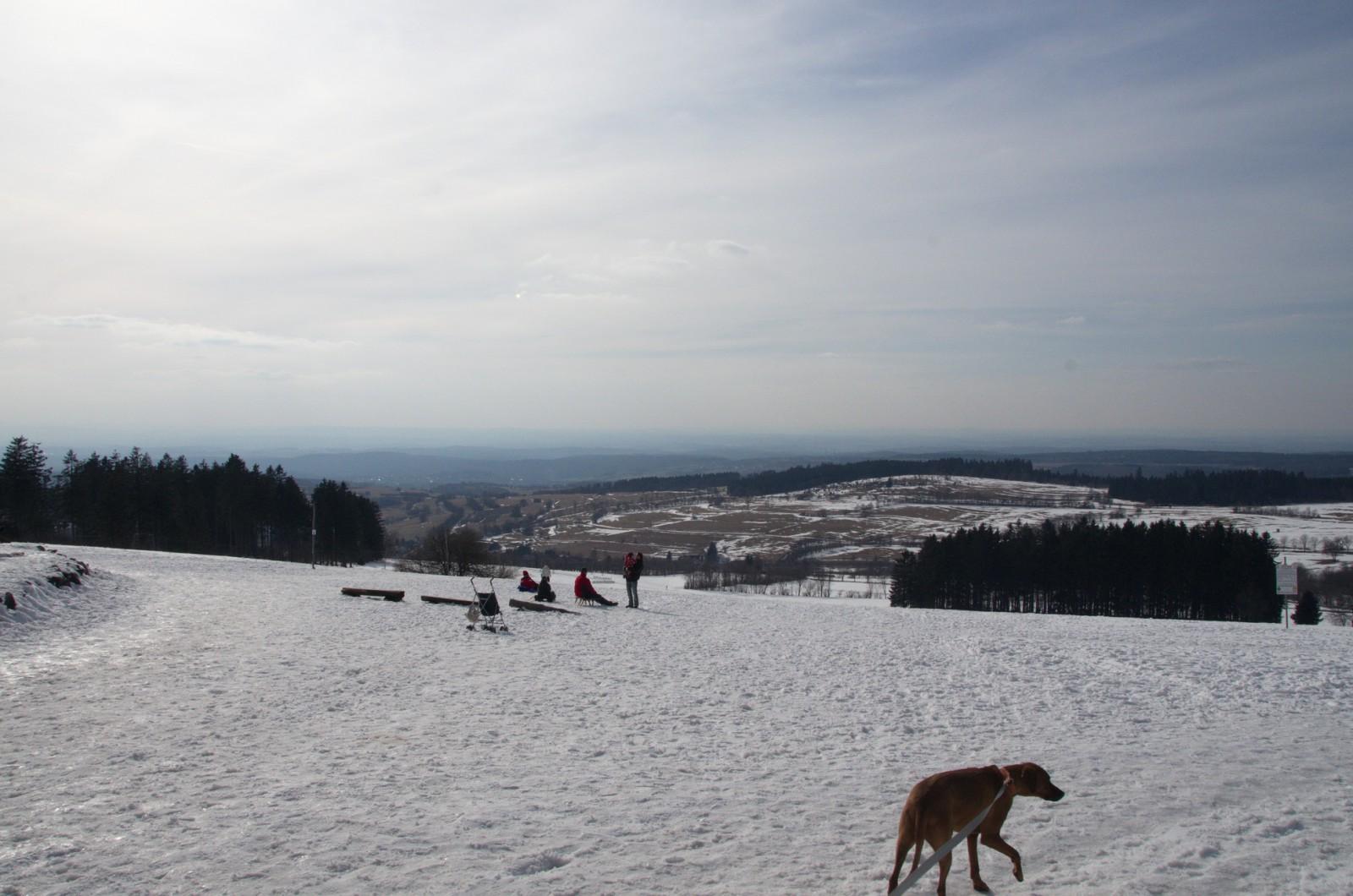 Plateau am Hoherodskopf