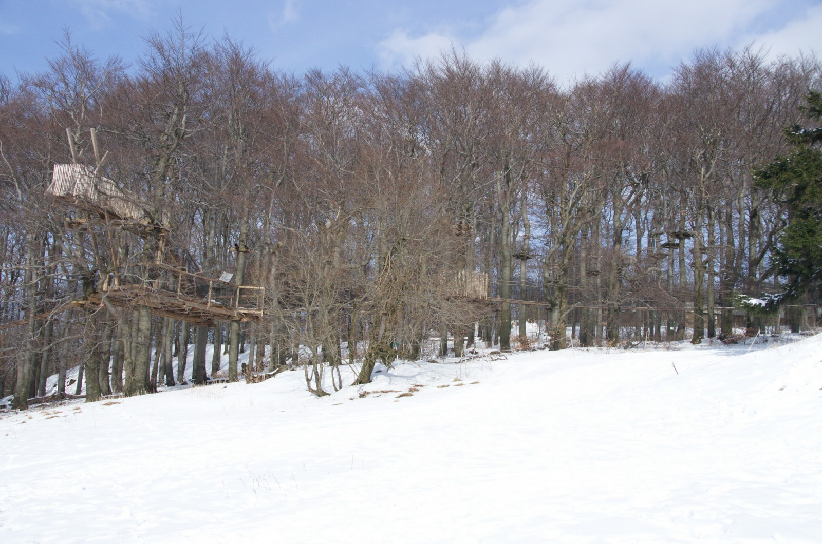 Saisonstart im Kletterwald verschoben