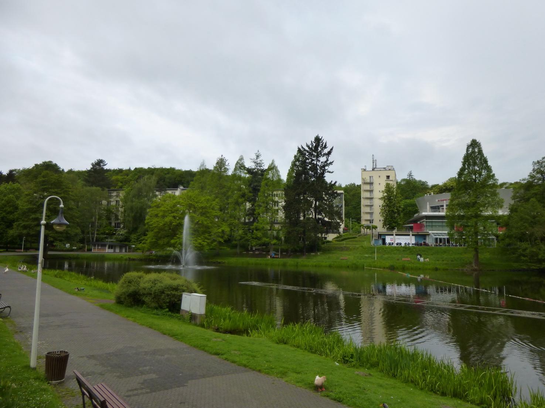 Das Victor's Residenz-Hotel Saarbrücken versteckt sich hinter Bäumen