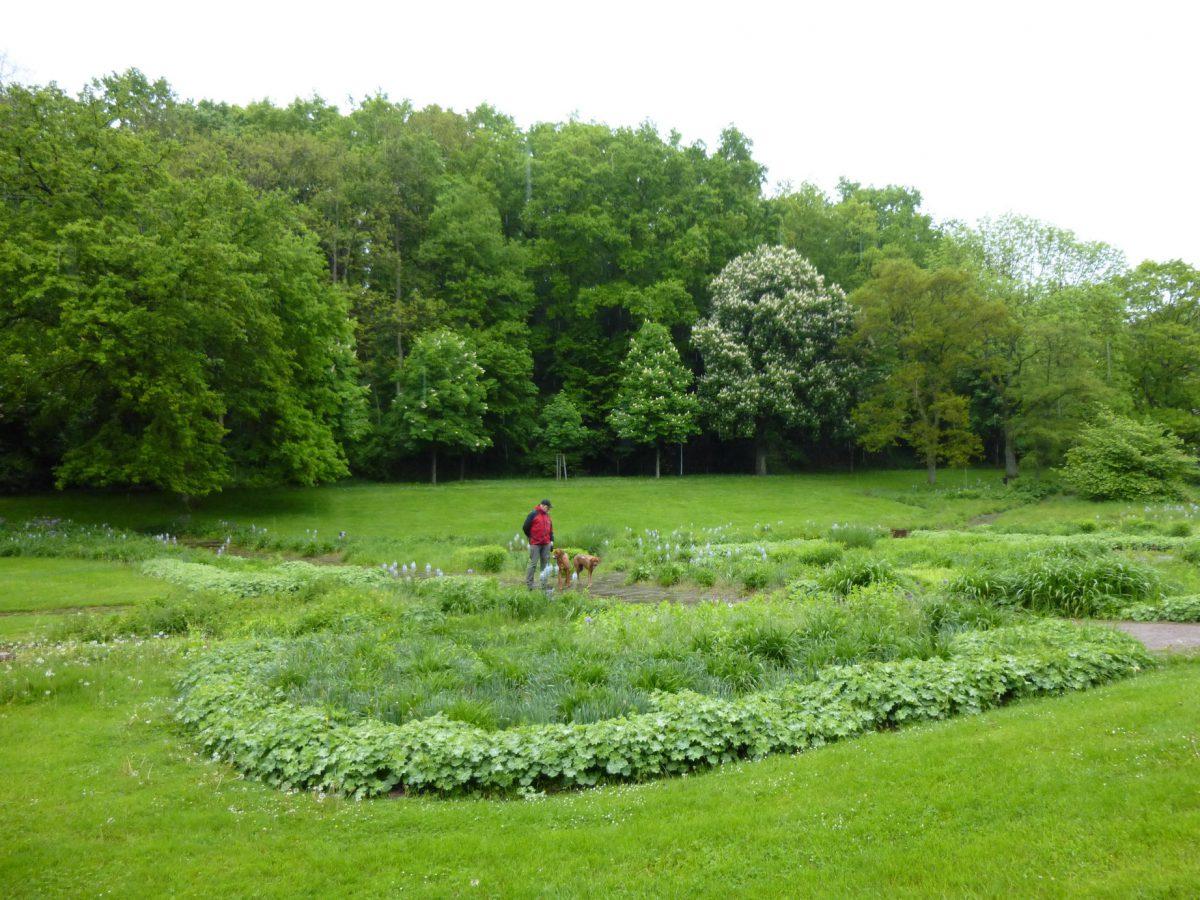 Spaziergang im Regen - Deutsch-Französischer Garten Saarbrücken