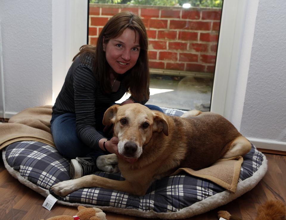 Totgeglaubter Hund nach zwei Jahren wieder zu Hause!