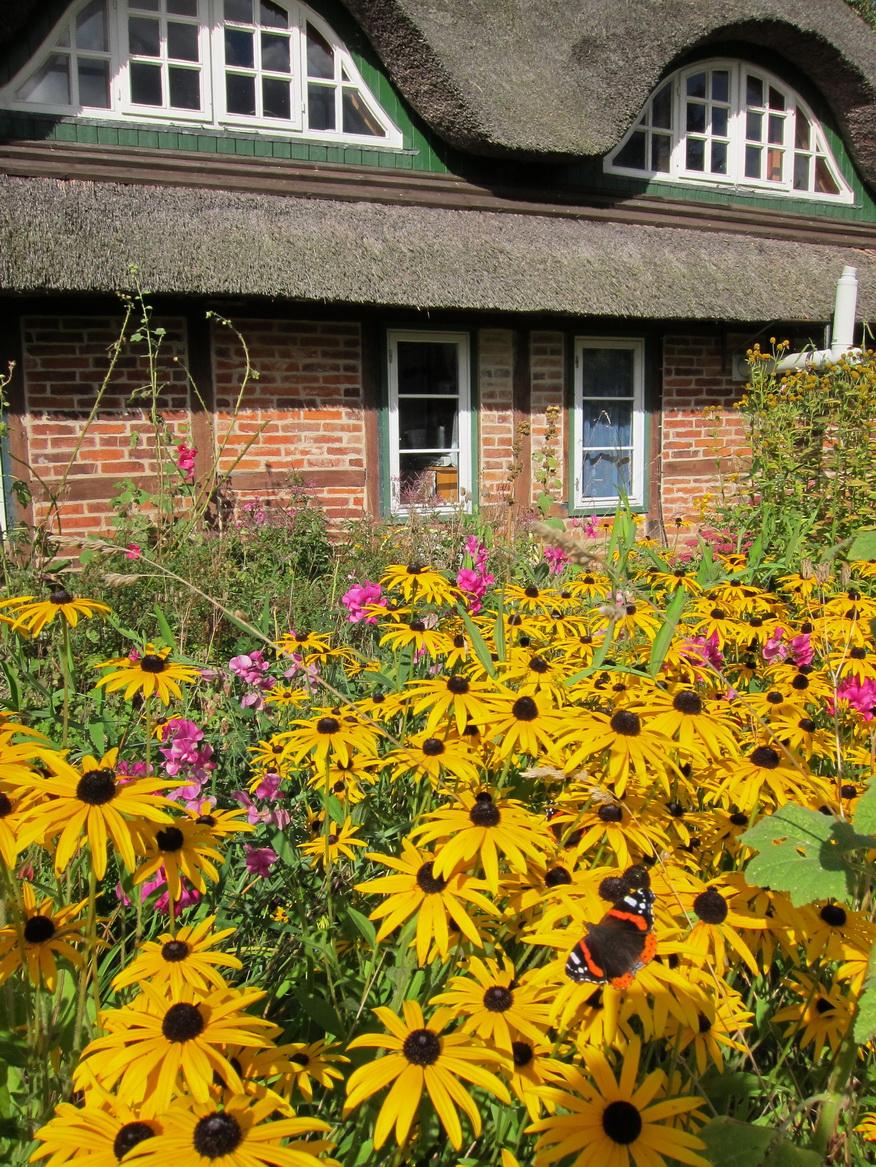 Blütenpracht eines Bauerngartens Foto: Landlust-Ferienhaus.de