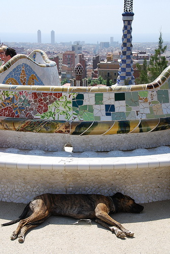 Parc Guell Foto: Michael Gwyther-Jones / flickr