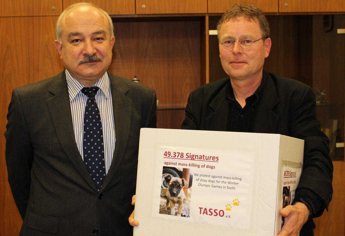 Olympische Winterspiele 2014 in Sotschi: Knapp 50.000 Stimmen gegen das Töten der Streunertiere