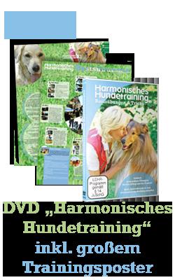 Quelle: Harmonisches Hundetraining
