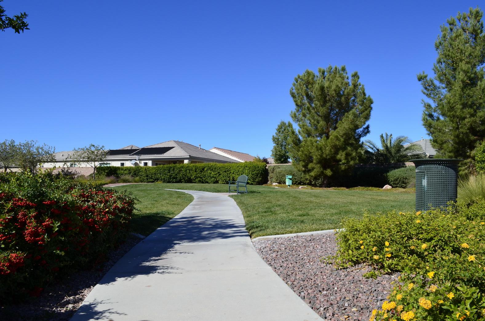 Nevada von seiner grünen Seite Foto: Katja Williams