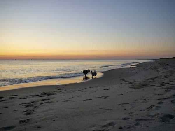Romantischer Strandspaziergang Foto: Elke Weiler