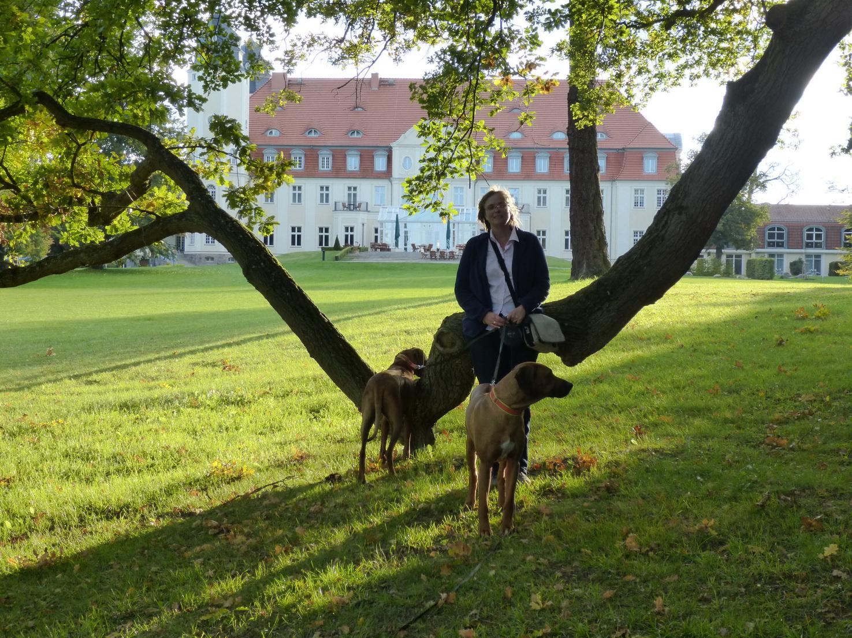 Schloss 5