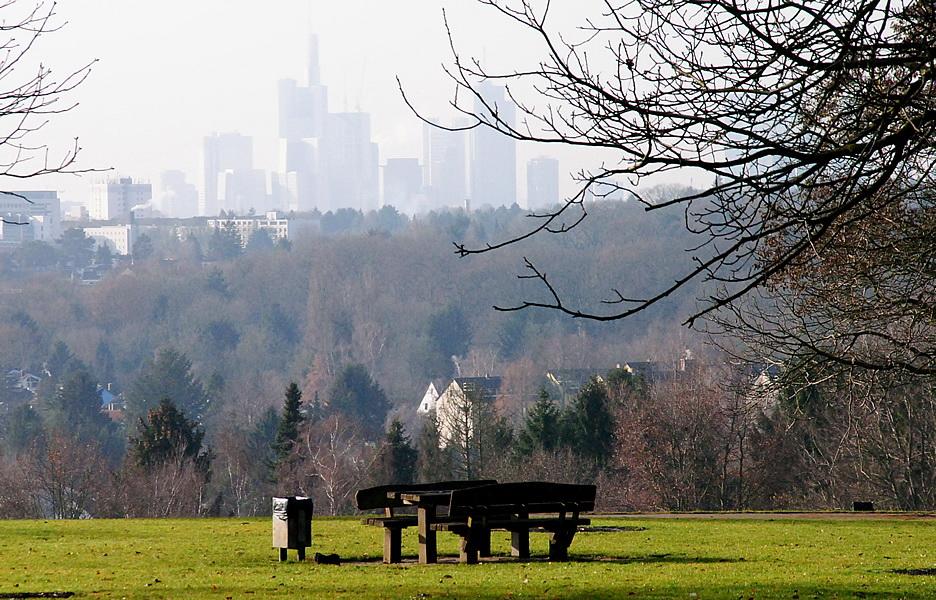 Frankfurter Skyline vom Lohrberg aus Foto: M. Nowak