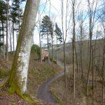 Von der Burg Wildenberg schlängelt sich der Weg durch den Wald hinunter