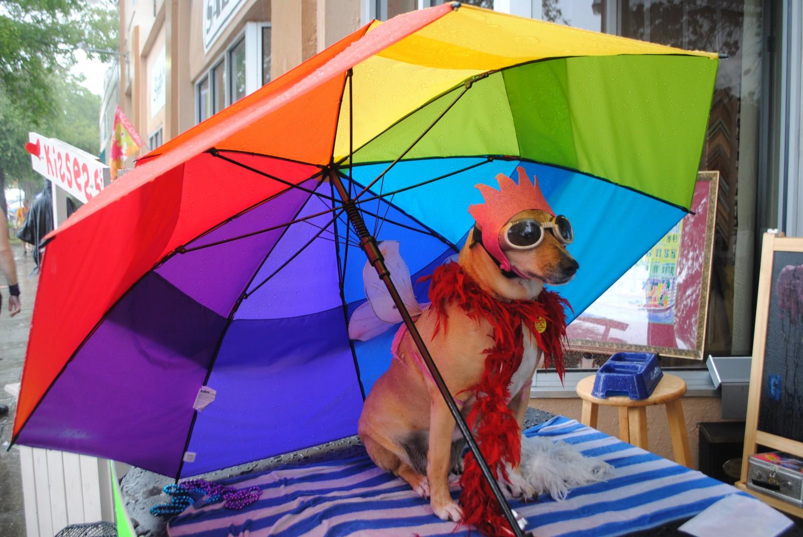 Pause unterm Schirm