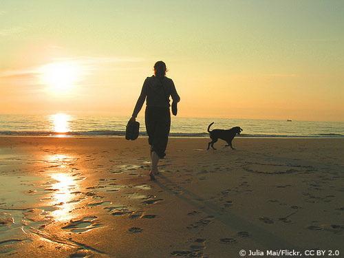 Sylt bei Sonnenuntergang Foto: Julia Mai/Flickr, CC BY 2.0