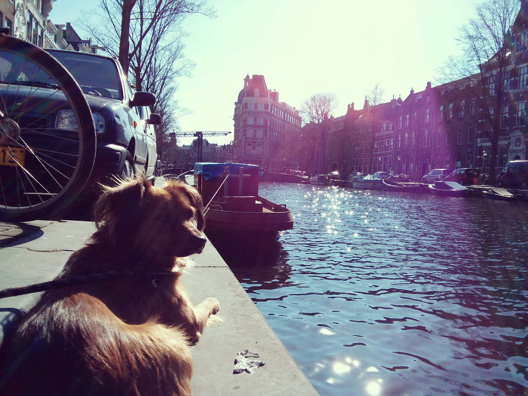 0522 marronamsterdam