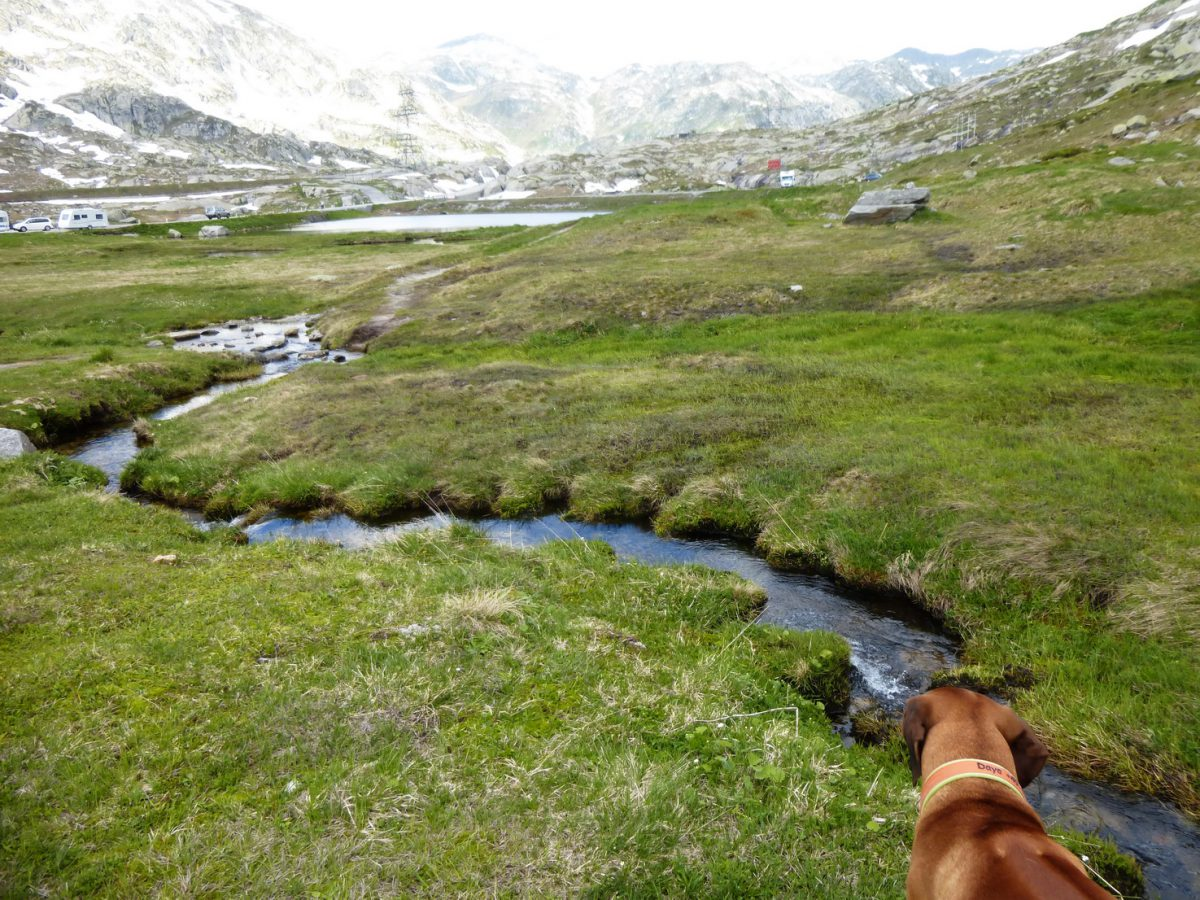 Stopover auf dem Gotthard-Pass