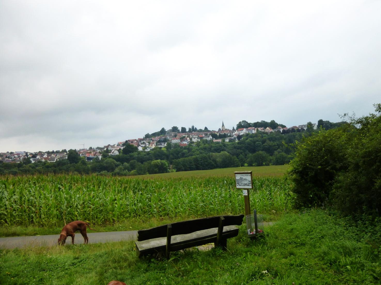 0730 Vogelsberg 49