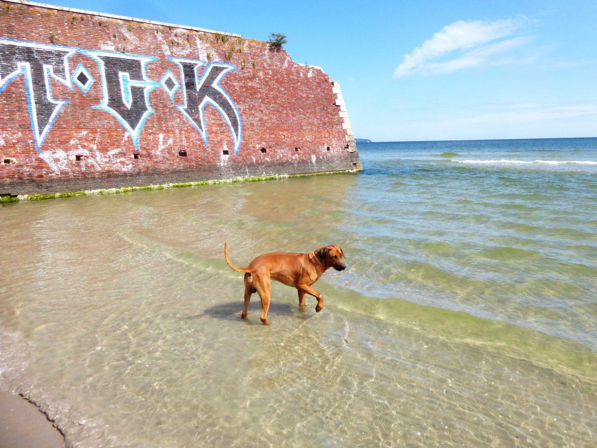 Strandlust auf Rügen