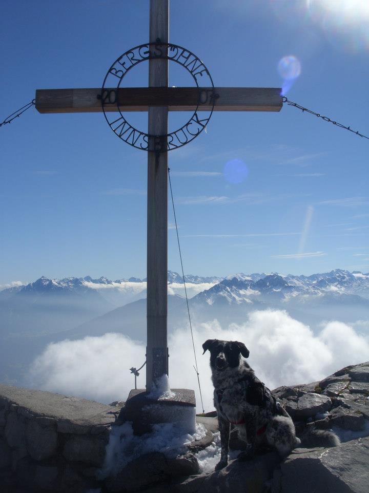 0910 Mika-am-Gipfel