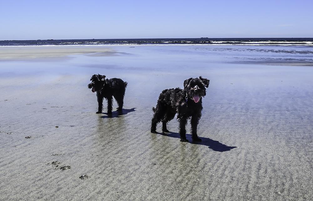 Hohbuck Beach