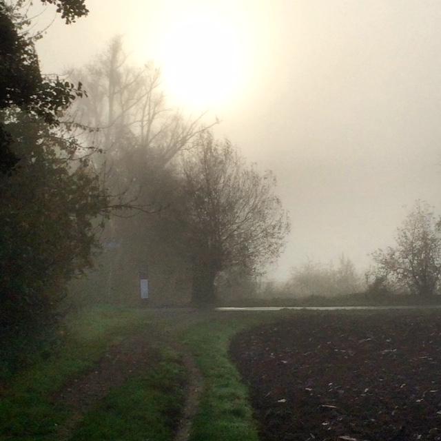 Romantischer Novembermorgen in der Wetterau