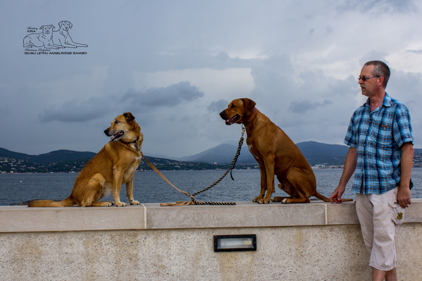 Pause am Hafen von St. Tropez