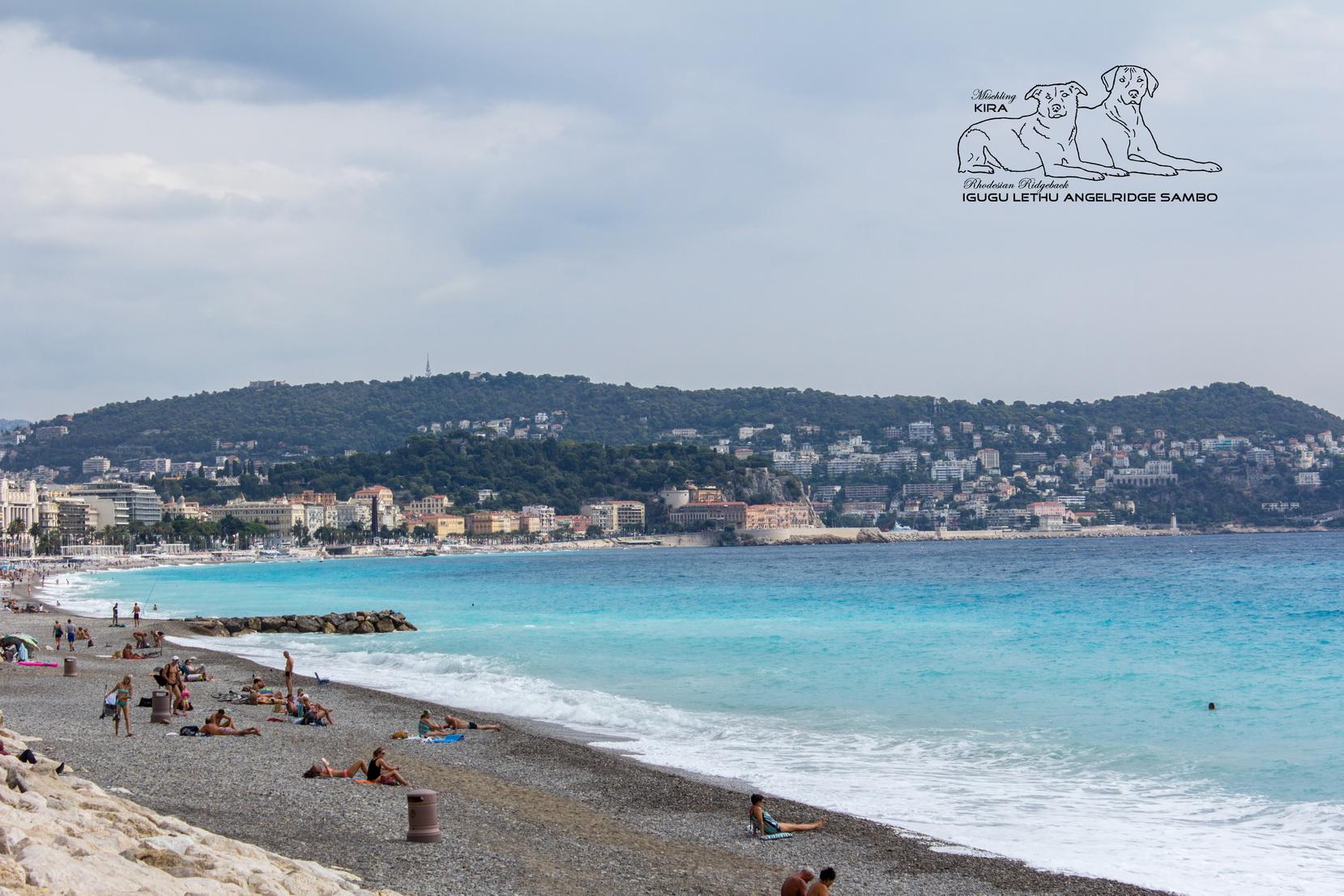 Pfeiffers - Strand Nizza