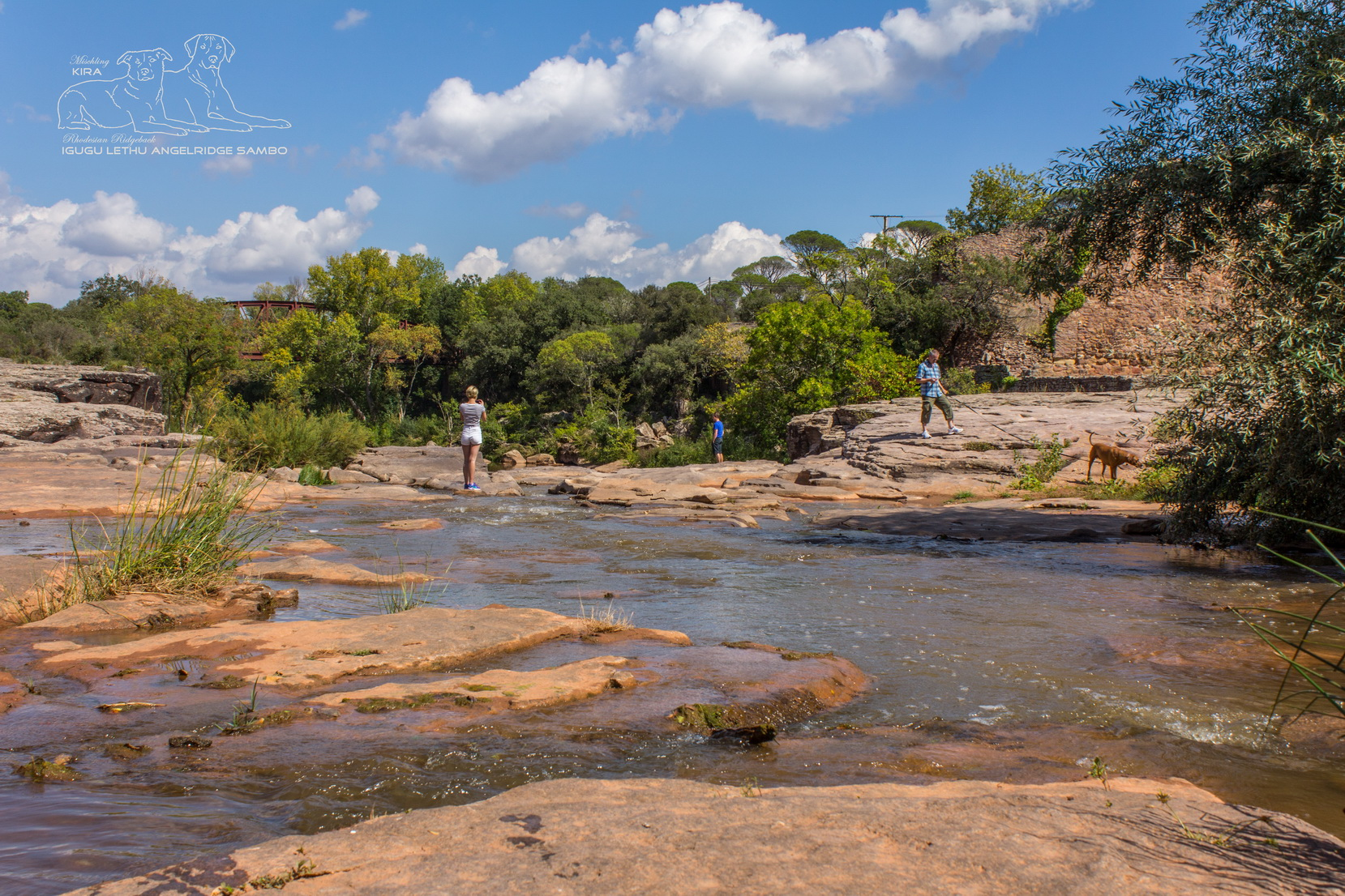 Pfeiffers - Wasserfall Vidauban 1
