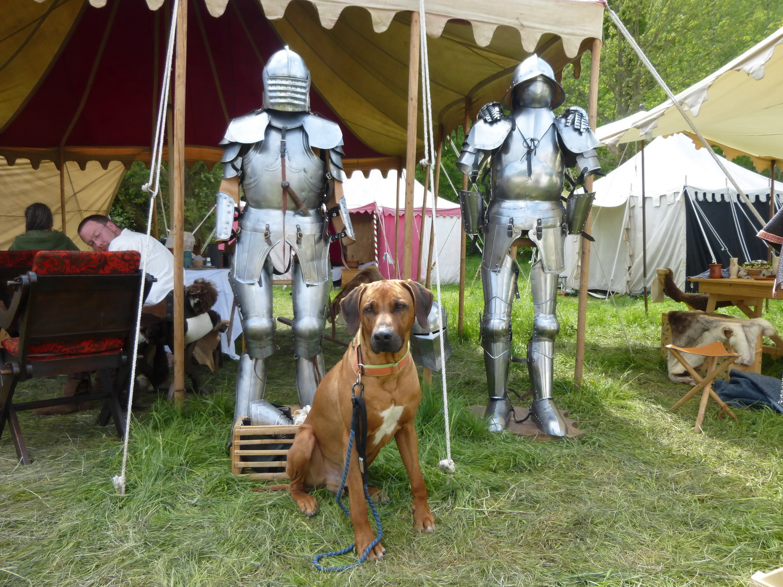 Mai 2015 Dayo bei den Rittersleuten