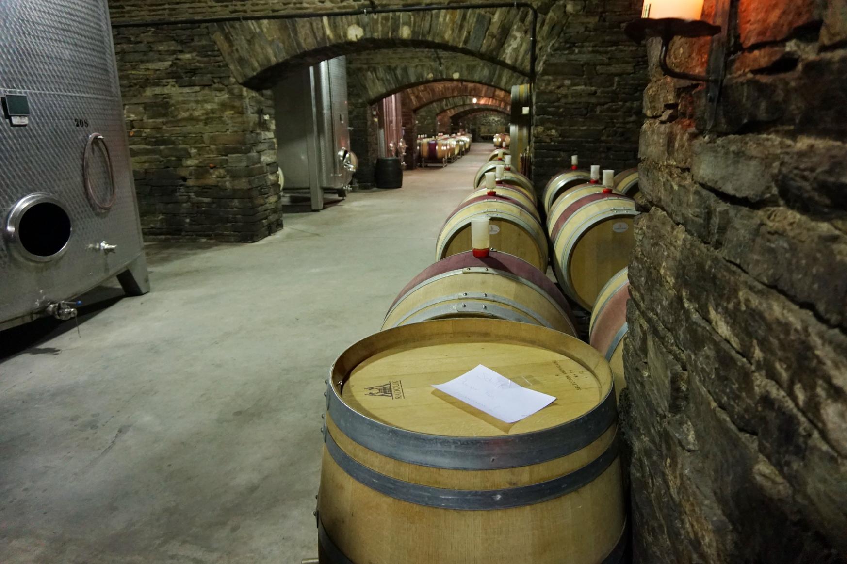 300.000 Liter lagern in den zahlreichen Holzfässern. Rund 1,6 Millionen Liter Wein finden Platz in Weintanks.