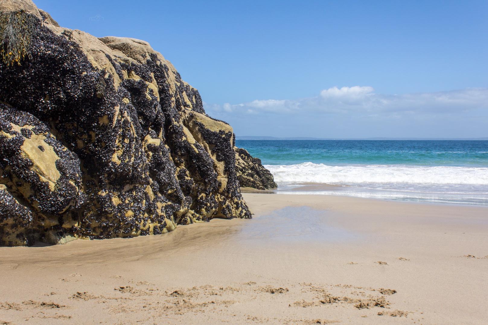 Strand an der Küste von Cap-Sizun in der Bretagne