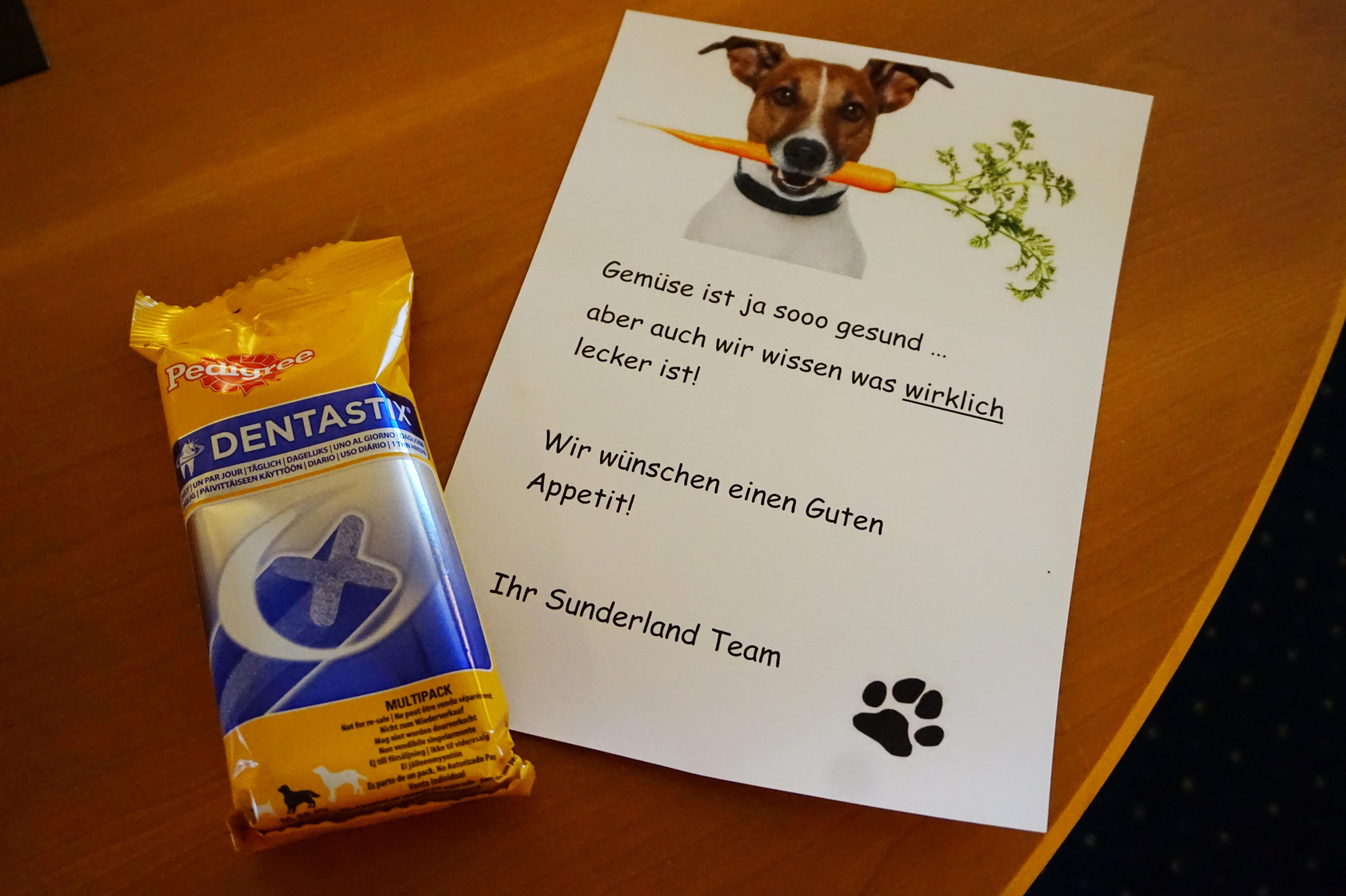 Willkommensgruß für Hunde im Sunderland Hotel im Sauerland