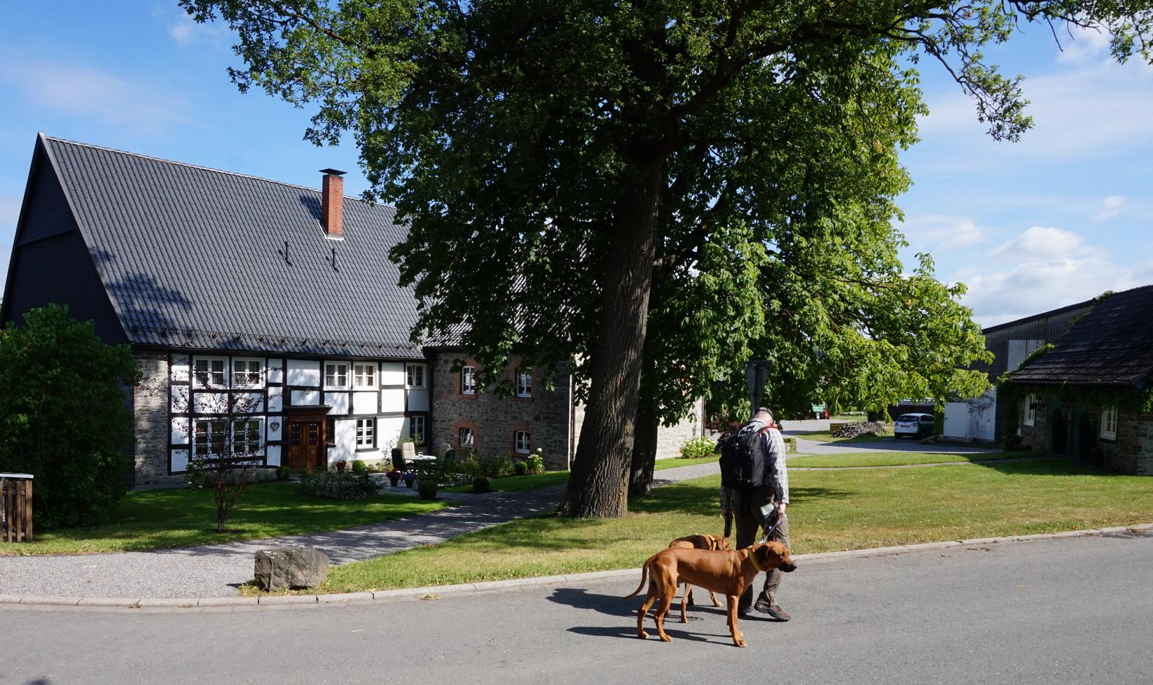 Wandergebiet Altes Testament Sauerland 2