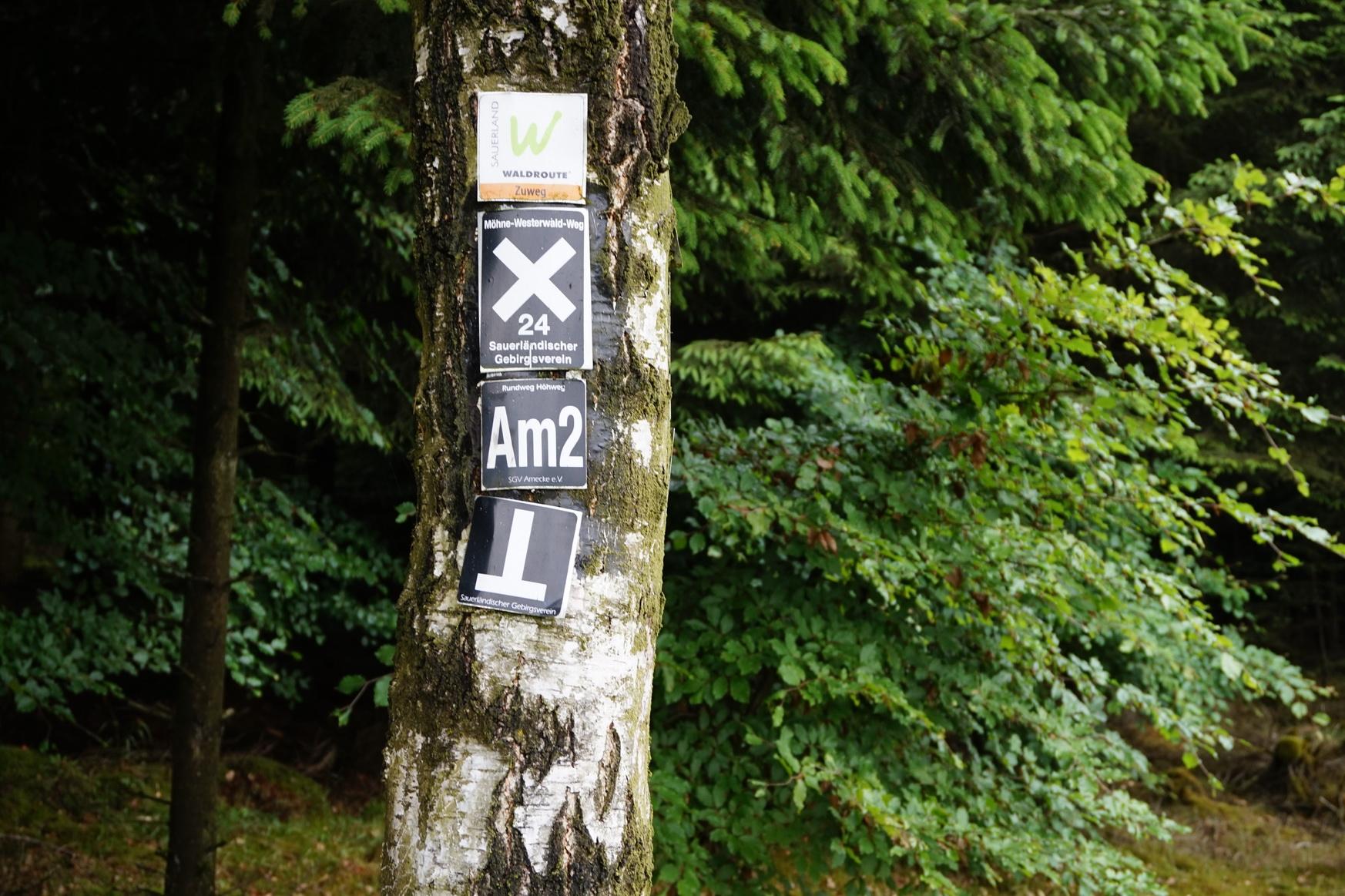 Wanderung Am2 Amecke Sauerland