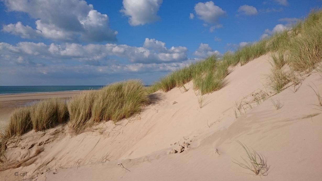 Blauer Himmel, weißer Sand und endloser Strand - mehr kann man sich nicht wünschen