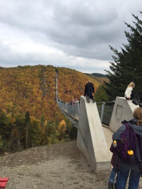Mit 4 Hunden über die längste Hängeseilbrücke Deutschlands