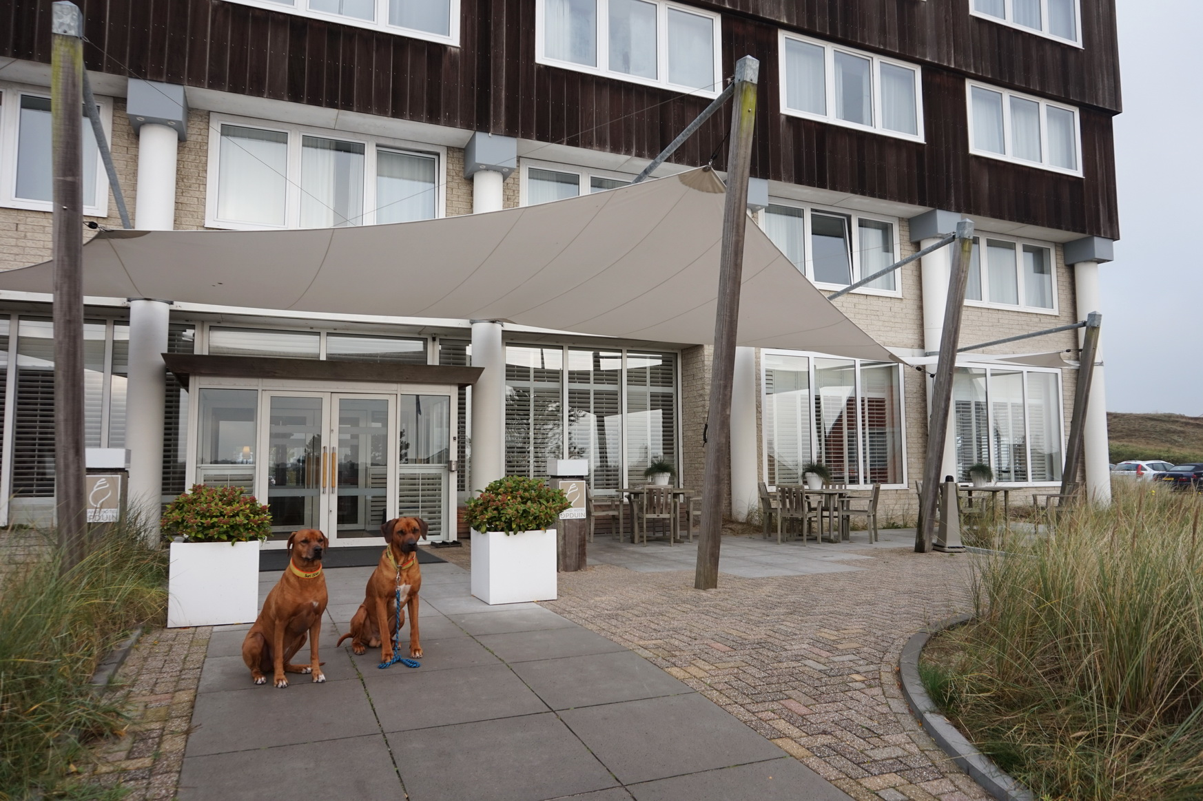 Texel Grand Hotel Opduin 1