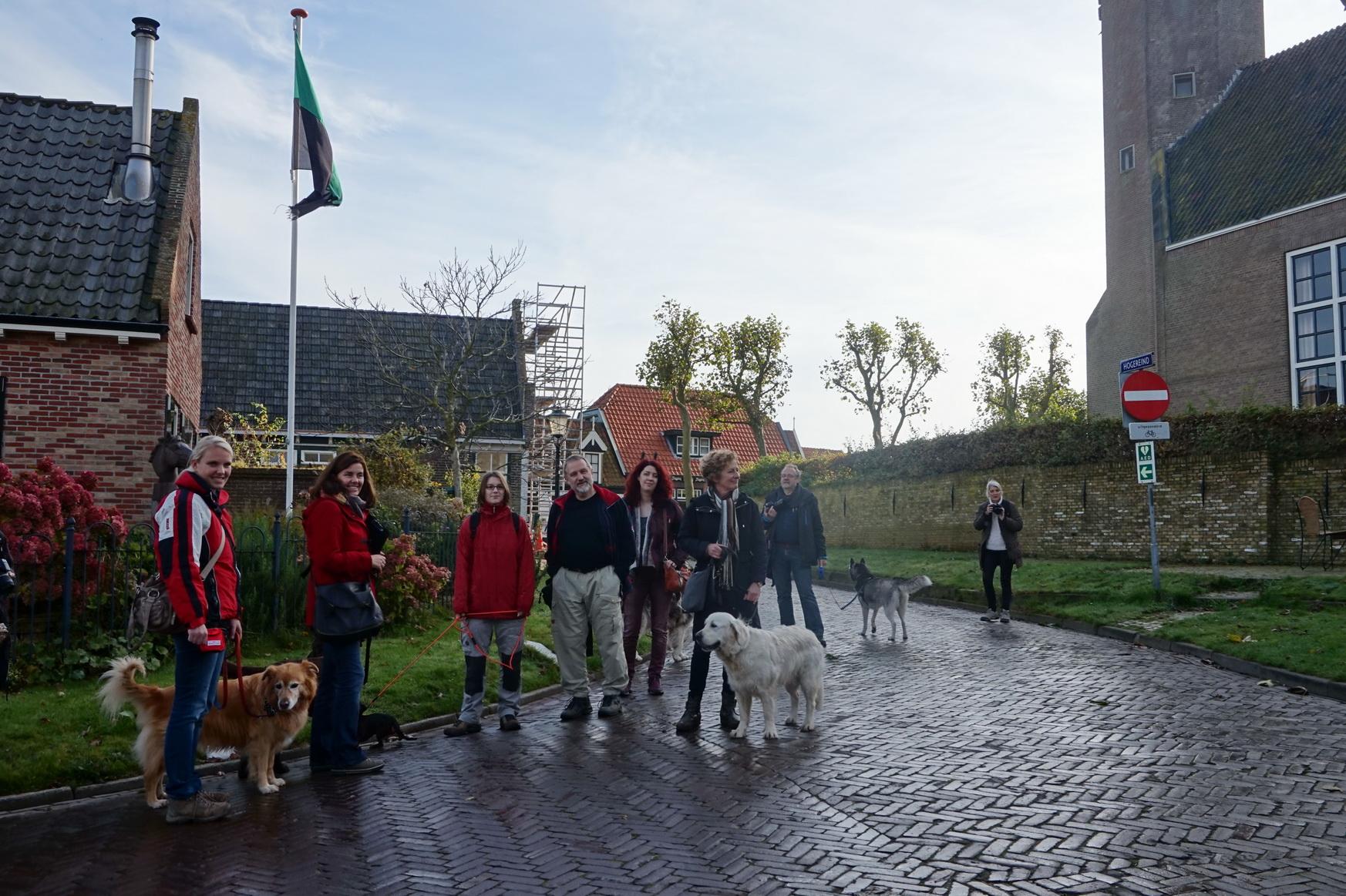 Erwartungsvolles Warten auf den holländischen Hundeflüsterer