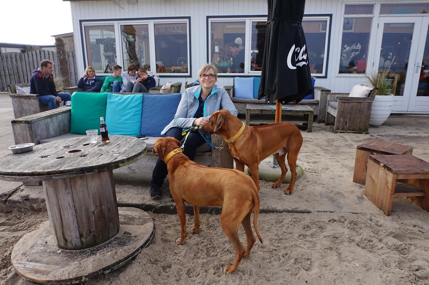 Texel Strandpavillon Kaap Noord 4