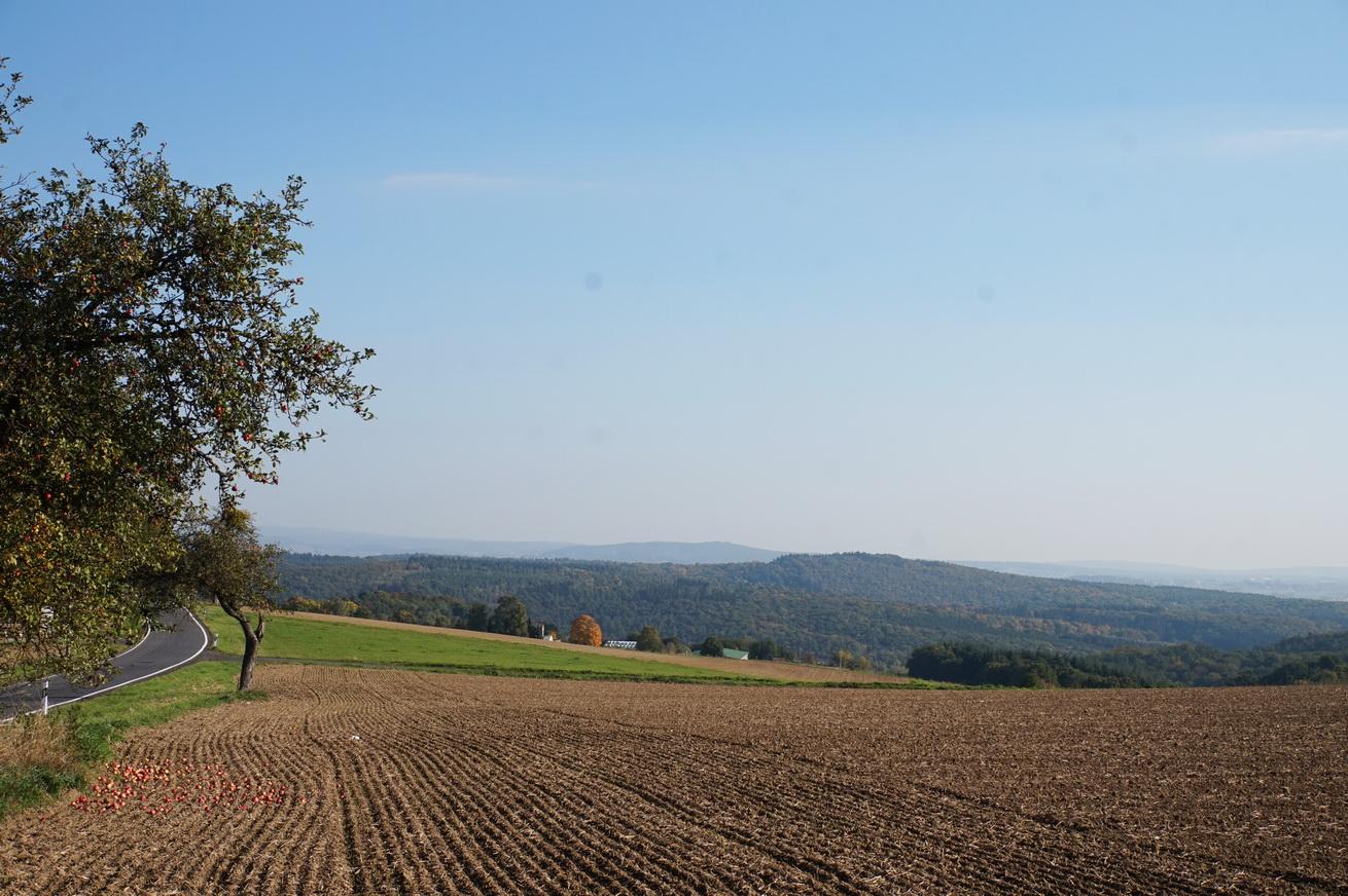Herrlicher Herbstmorgen kurz vor Niedererbach im südlichen Westerwald