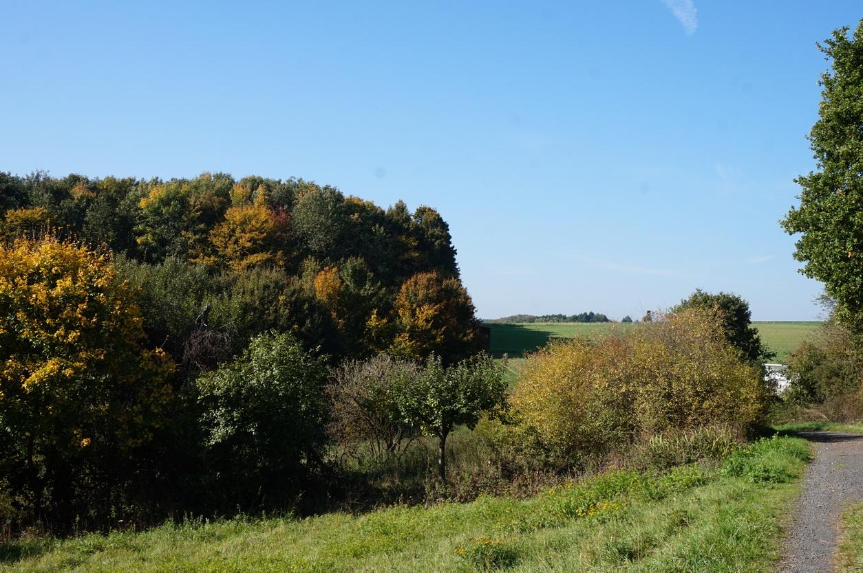 Milanwanderwege Niedererbach Westerwald 12
