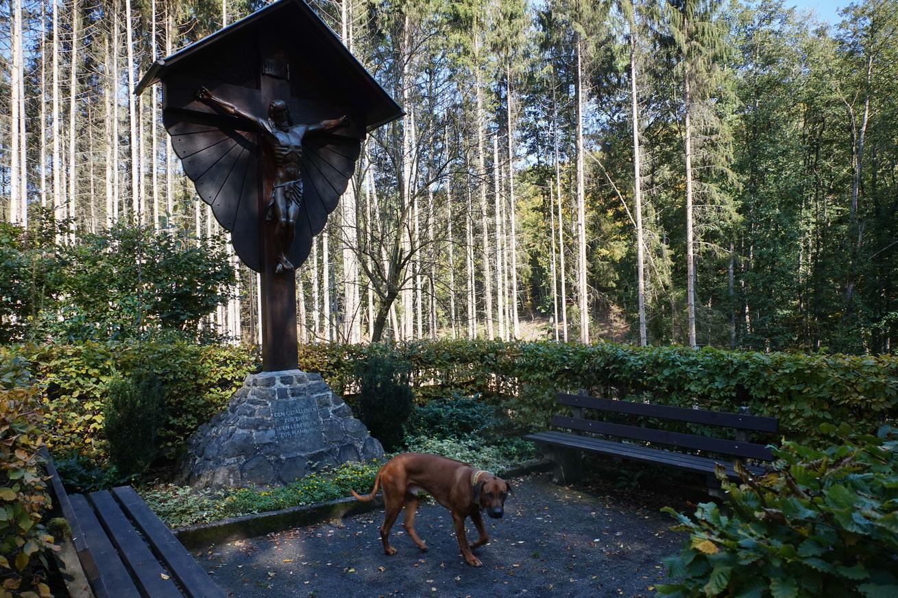Milanwanderwege Niedererbach Westerwald 17