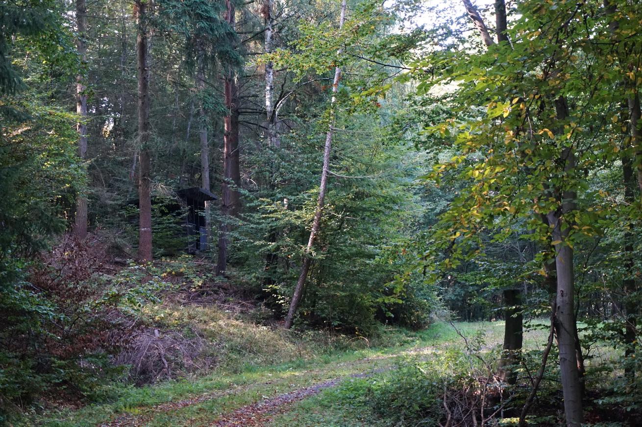 Milanwanderwege Niedererbach Westerwald 21