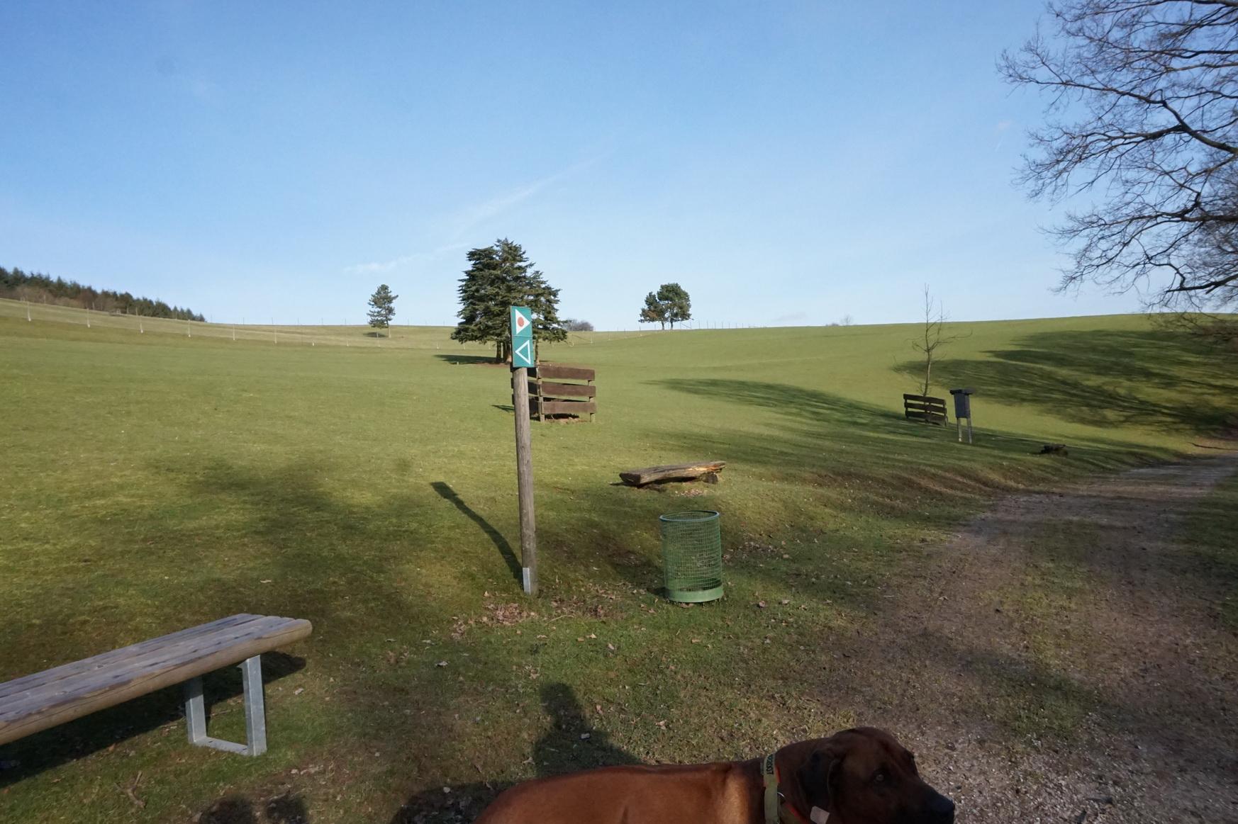 Wildpark Gackenbach Westerwald 12